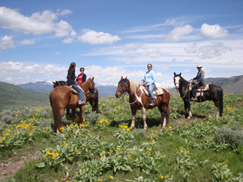 Experience Horseback Riding in Jackson Hole